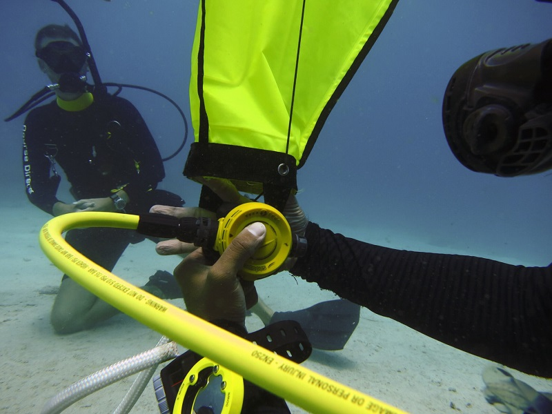 padi_search_recovery_crystal_divers_indonesia