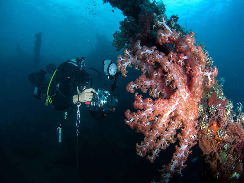 padi_underwater_photography_speciality_crystal_divers_bali_indonesia